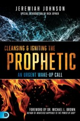 Cleansing and Igniting the Prophetic: An Urgent Wake-Up Call - eBook
