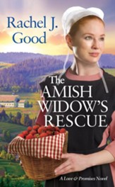 The Amish Widow's Rescue - eBook
