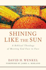 Shining Like the Sun: A Biblical Theology of Meeting God Face to Face - eBook