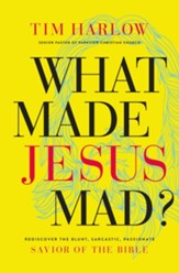 What Made Jesus Mad?: Rediscover the Blunt, Sarcastic, Passionate Savior of the Bible - eBook