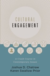Cultural Engagement: A Crash Course in Contemporary Issues - eBook