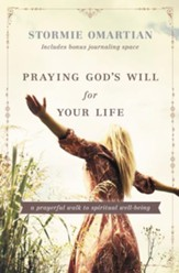 Praying God's Will for Your Life: A Prayerful Walk to Spiritual Well Being - eBook