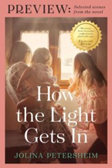 How the Light Gets In PREVIEW: SELECTED SCENES FROM THE NOVEL - eBook