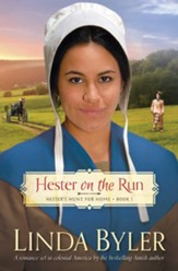 Hester on the Run: Hester's Hunt for Home, Book One - eBook