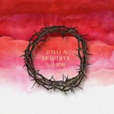 Beautiful Savior [Music Download]
