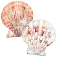 Anchored: Scalloped Seashells (Pack of 120)