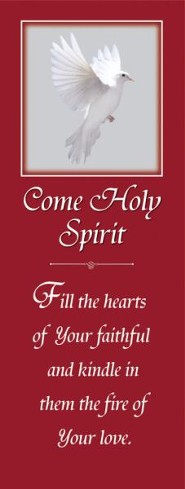 X-Stand Banner: Come Holy Spirit (23 inch x 63 inch)