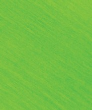 Roar: Crepe Paper, Light Green (pkg. of 10 sheets)