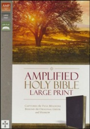 Bonded Leather Burgundy Large Print Book