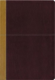 KJV and Amplified Parallel Bible, Large Print, Leathersoft, Tan and Red