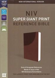 Large Print Bibles - Christianbook com