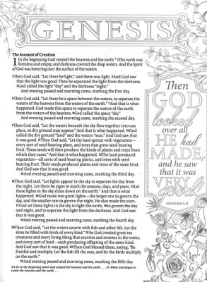 NLT Inspire Bible: The Bible for Creative Journaling, Softcover -