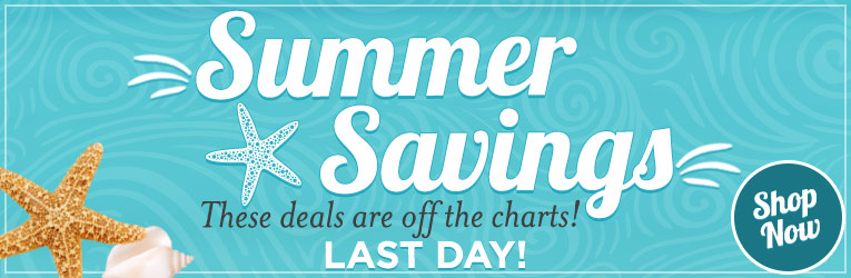 Summer Savings Last Day
