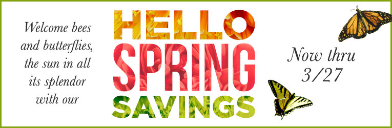 Hello Spring Savings