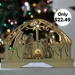 Nativity Light Up