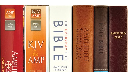 Shop All Amplified Bibles