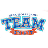 Team Spirit VBS Logo