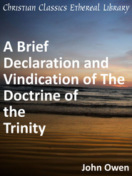 Brief Declaration and Vindication of The Doctrine of the Trinity - eBook  -     By: John Owen