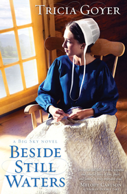 Beside Still Waters - eBook  -     By: Tricia Goyer