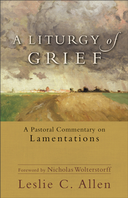 Liturgy of Grief, A - eBook  -     By: Leslie C. Allen