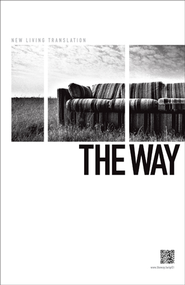 The Way - eBook  -     By: Mark Oestreicher