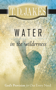 Water in the Wilderness: God's Provision for our Every Need - eBook  -     By: T.D. Jakes