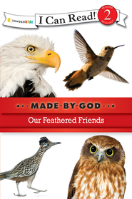 Our Feathered Friends - eBook  -