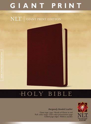 Holy Bible, Giant Print NLT, Bonded Burgundy Leather  -