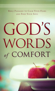 God's Words of Comfort: Bible Passages to Calm Your Fears and Feed Your Soul - eBook  -