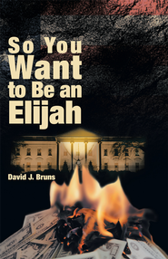 So You Want to Be an Elijah - eBook  -     By: David Bruns