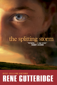 The Splitting Storm - eBook  -     By: Rene Gutteridge