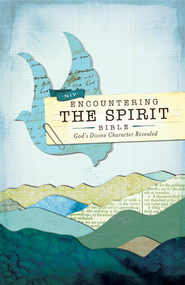 NIV Encountering the Spirit Bible: Discover the Power of the Holy Spirit / Special edition - eBook  -