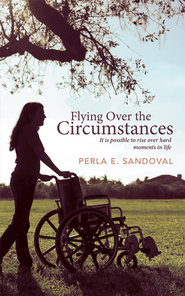 Flying Over the Circumstances: It is possible to rise over hard moments in life - eBook  -     By: Perla Sandoval