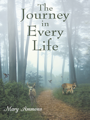 The Journey In Every Life - eBook  -     By: Mary Ammons