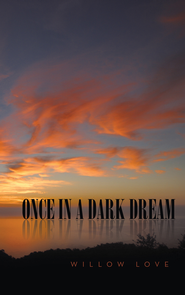 Once in a Dark Dream - eBook  -     By: Willow Love