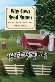 Why Cows Need Names: And More Secrets of Amish Farms - eBook  -     By: Randy James