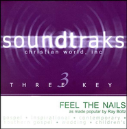 Feel the Nails, Acc CD   -     By: Ray Boltz