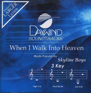 When I Walk Into Heaven, Accompaniment CD   -     By: Skyline Boys