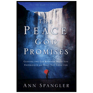 The Peace God Promises: Closing the Gap Between What You Experience and What You Long For Audiobook  [Download] -     Narrated By: Connie Wetzell     By: Ann Spangler