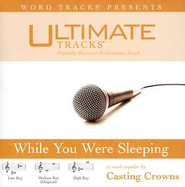Ultimate Tracks - While You Were Sleeping - as made popular by Casting Crowns [Performance Track]  [Music Download] -     By: Casting Crowns