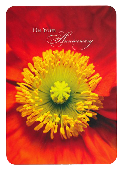 Lifetime of Love Anniversary Cards, Box of 12