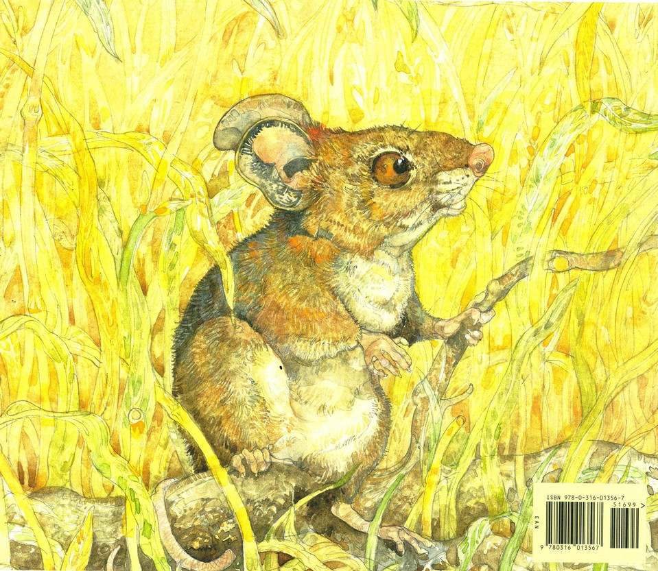 The Lion & the Mouse, Picture Book: Jerry Pinkney: 9780316013567 -  Christianbook.com