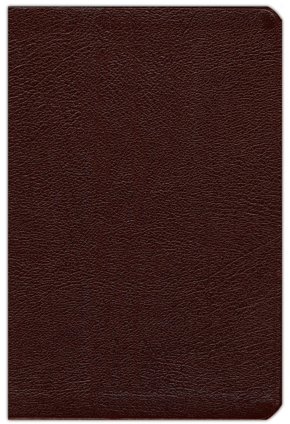 NKJV New Spirit Filled Life Bible, Bonded leather, Burgundy