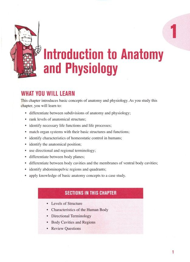 Barron\'s E-Z Anatomy & Physiology, 3rd Edition: I. Edward Alcamo ...