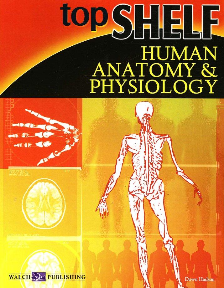 Top Shelf Human Anatomy and Physiology: Dawn Hudson: 082515510X ...
