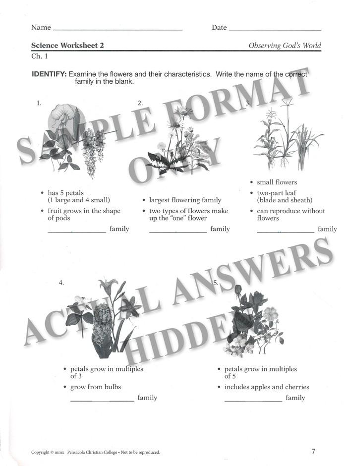 Answer finder worksheet Homework Answers: