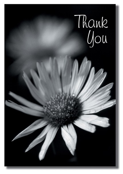 Black and White Flowers Thank You Cards, Box of 12