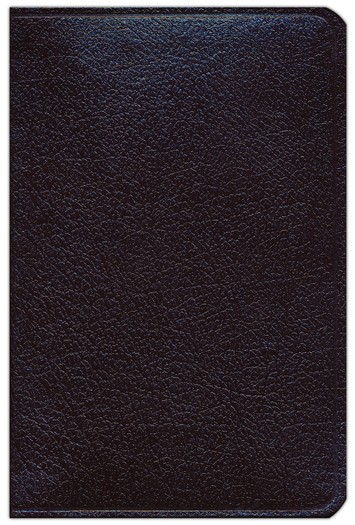 NAS Compact Reference Bible, Bonded leather, Burgundy
