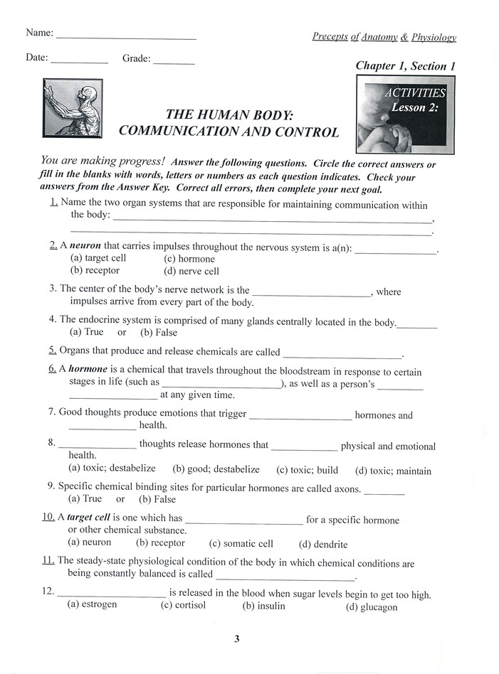 Precepts Of Anatomy Physiology Chapter 1 Activity Book