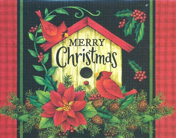 Christmas Cardinals Images.Christmas Cards Merry Christmas Cardinals Box Of 12